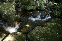 Stream at Anachola