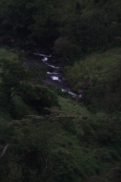 The stream down around Banasura