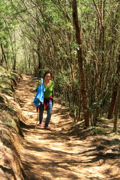 Preethu walking on a trail lined with Wattle trees