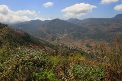 View towards Munnar