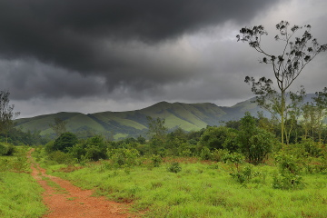 View from Bhagavathi nature camp
