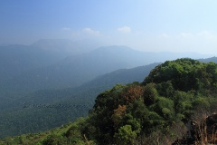 View of Coorg from Pythalmala ridge