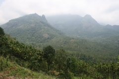 Kuppippara and Vellarimala ranges