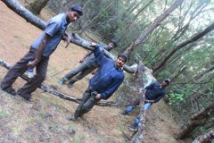 Rajan and the forest guards