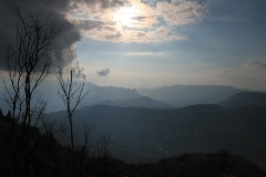 Hills of Munnar from Vandaravu